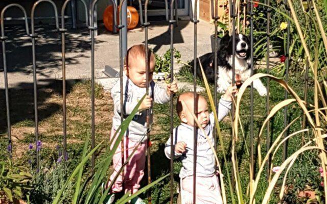 Der Zaun ist angebracht und erfüllt die gewünschte Funktion