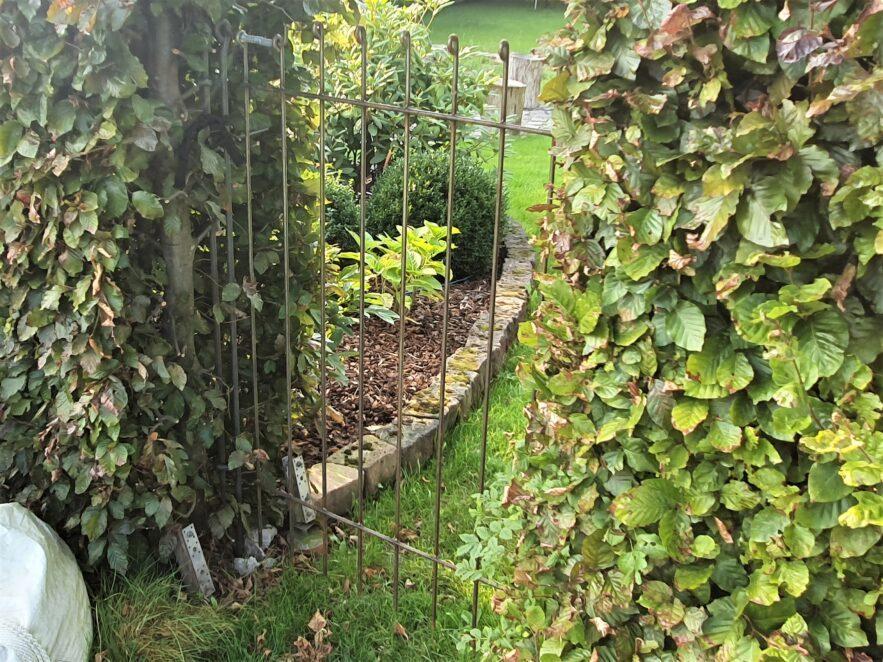 Gartentor aus Stahl zwischen den Hecken eingebaut