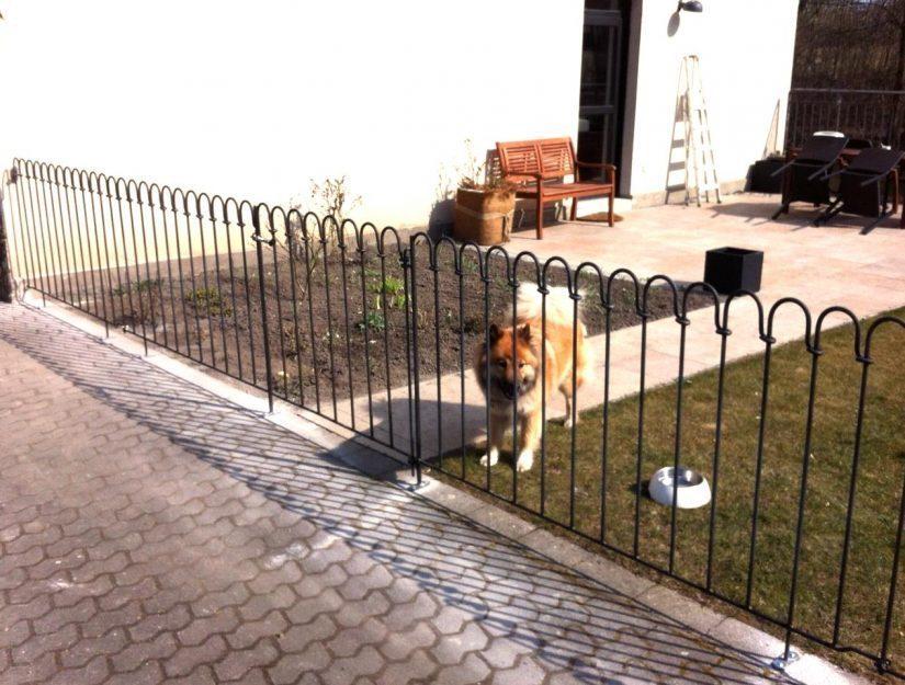 Der Hund bleibt im Garten wegen dem aufgeschraubten Terrassenzaun.