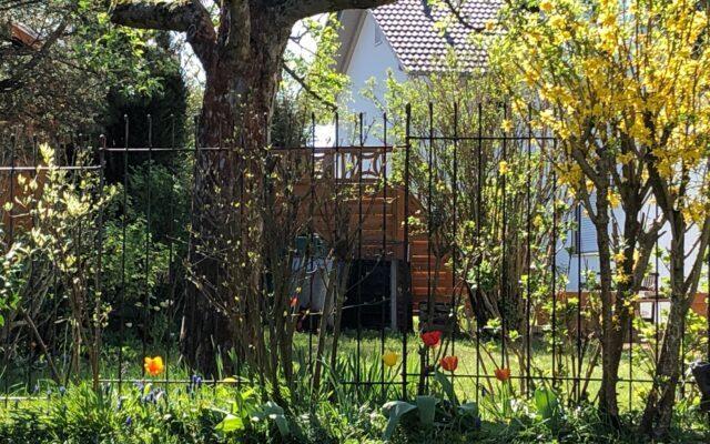 Zaun passt super zum Garten