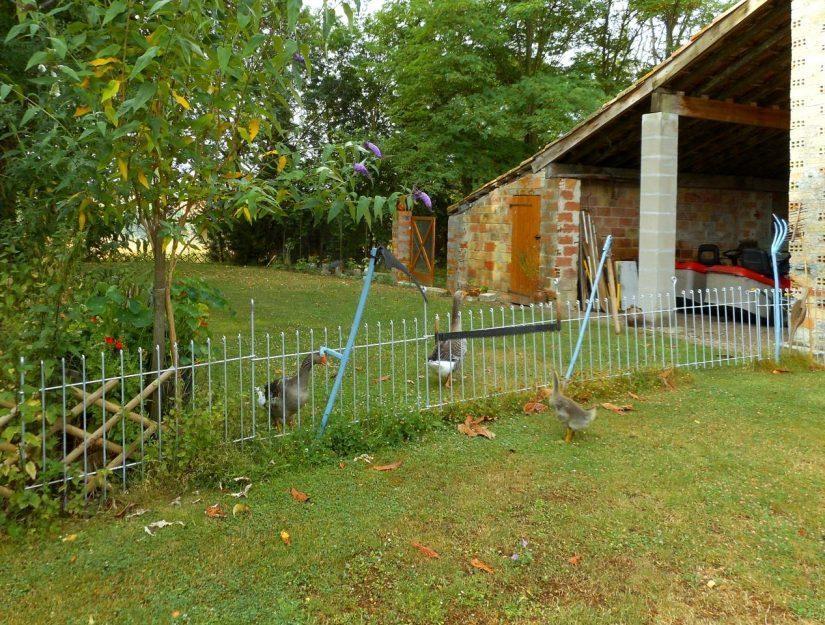 Der Gartenzaun trennt die Gänse und ist mit alten Gerätschaften verziert.