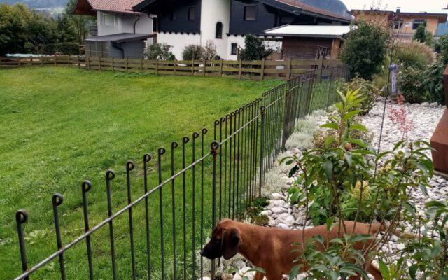 Zaun für Kinder und Hund
