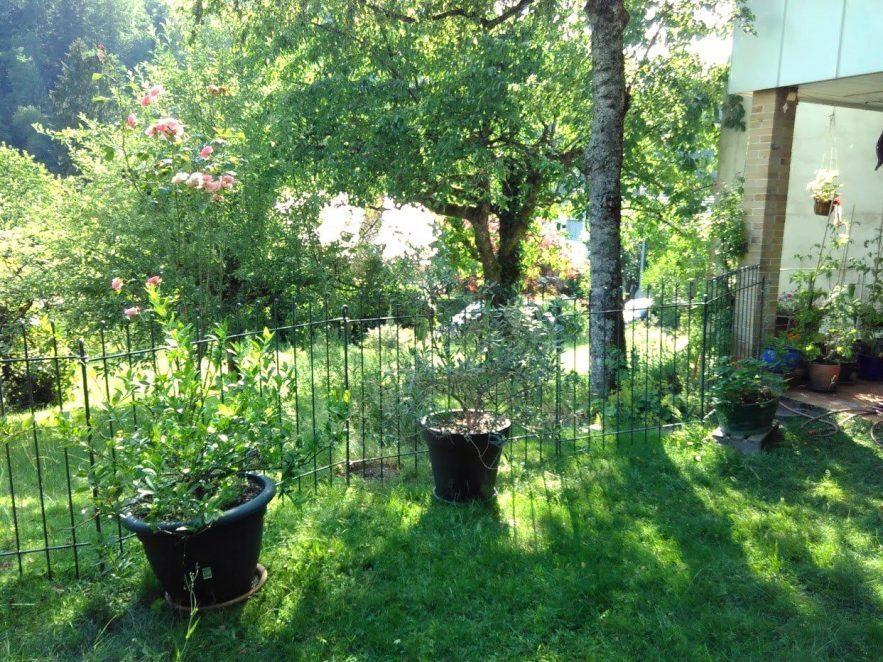 Zaun im Garten für den Hund einfach in den Boden eingesteckt