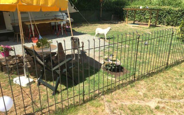 Hundezaun für den Campingplatz