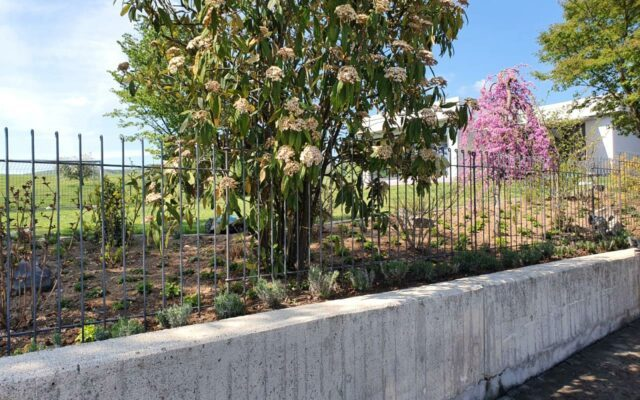 Eine Alternative zu einem Doppelstabmatten-Zaun