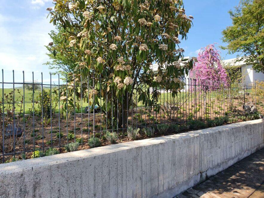 Der Zaun wertet unser Haus und Grundstück enorm auf.