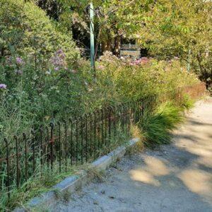 Rostender Eisenzaun im Park vor einer Anpflanzung