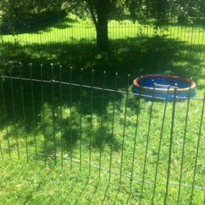 Ein 115 cm hoher Zaun trennt einen Abschnitt auf dem Rasen ab.