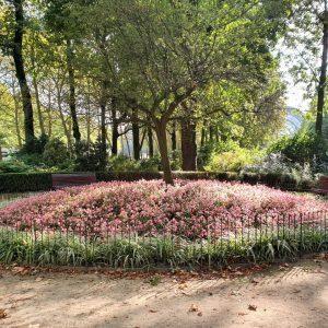 Schlichter Zaun als Schutz für die Blumen in einem Stadtpark