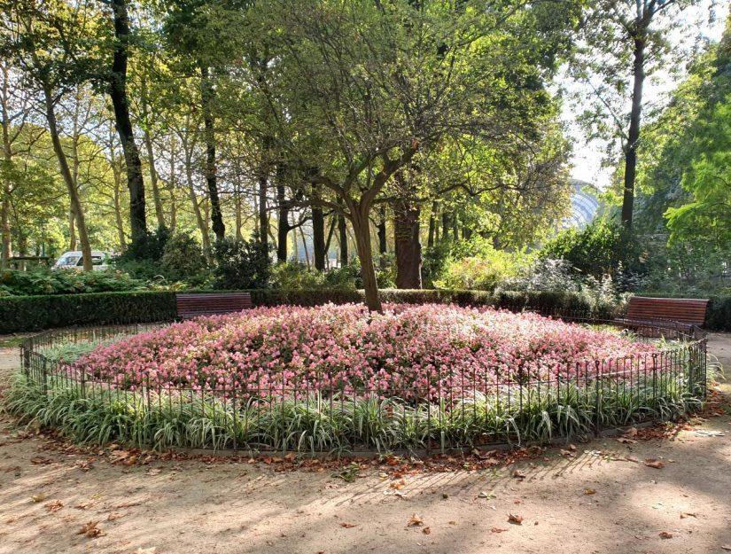 Schlichter Zaun als Schutz für die Blumen in einem öffentlichen Stadtpark.