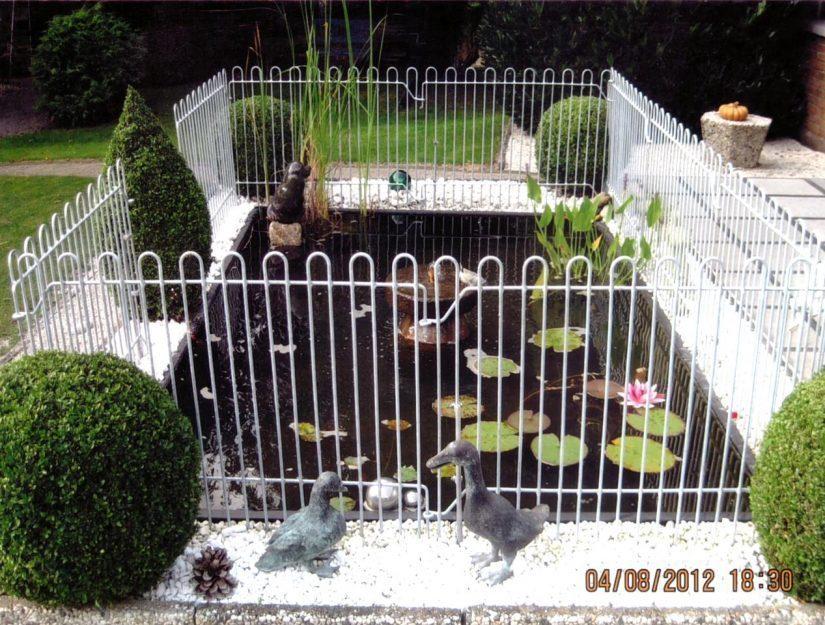 Verzinkter Zaun wegen der Fisch-fressenden Tiere um ein Wasserbecken.