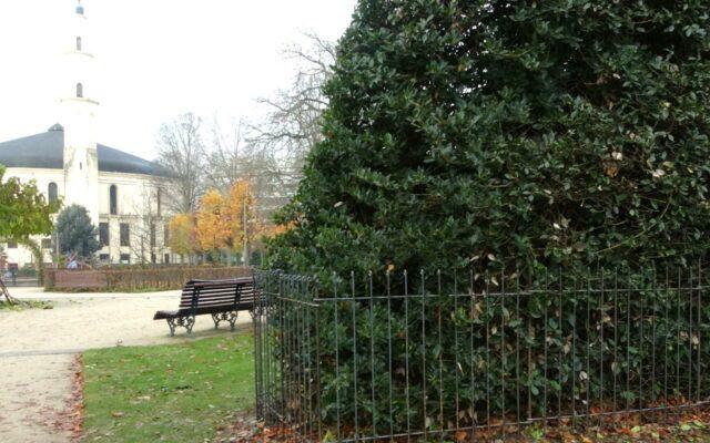 Le buisson était utilisé comme toilette.