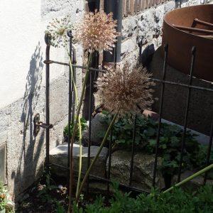 Die Wandbefestigung erfolgt mittels Wand-Halterung mit Klemmführung