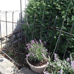Der Wandhalter mit Klemm-Führung (Zubehör) hält den Zaun stabil an der Wand