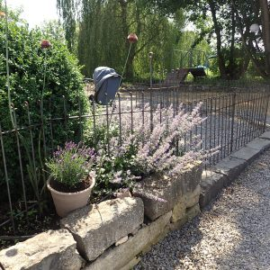 Lavendel wächst durch den rostigen Metall-Zaun