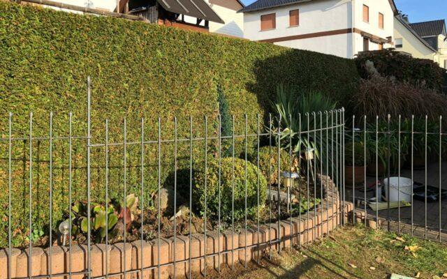 Gebogener Gartenzaun für einen Hund